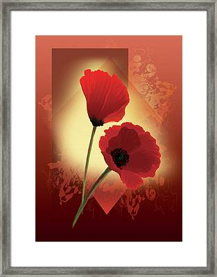 Contemporary Wild Poppies Framed Print