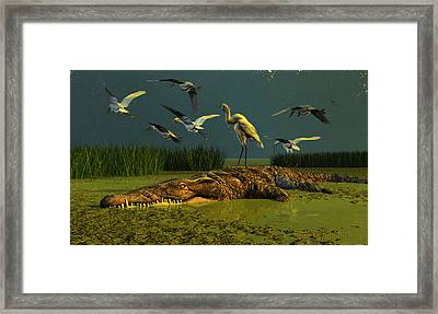 Contempt Framed Print by Dieter Carlton