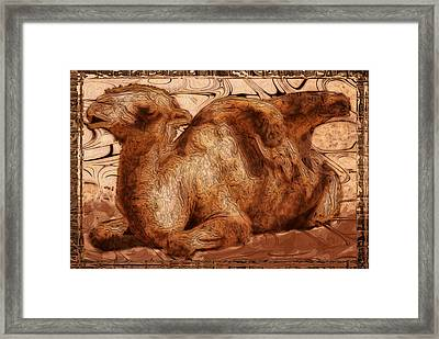 Content Framed Print by Jack Zulli