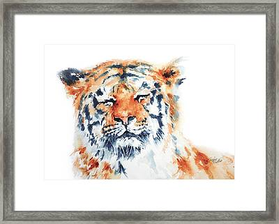 Contentment Framed Print by Stephie Butler