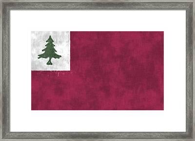 Continental Flag Framed Print