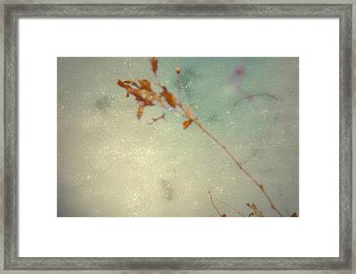 Continues Framed Print by Mark  Ross