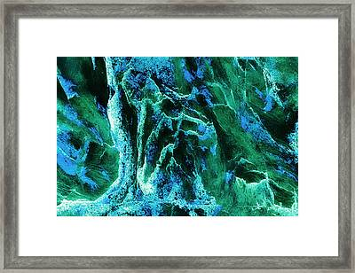 Contours 081 Abstract Framed Print by Natalie Kinnear