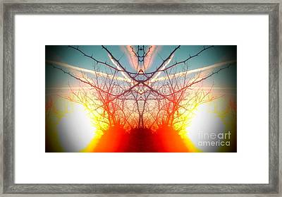 Contrails And Hedge Framed Print