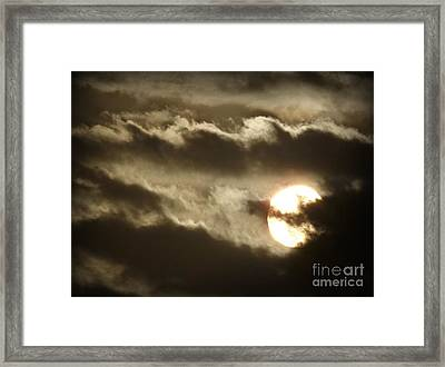 Framed Print featuring the photograph Contrast by Clare Bevan