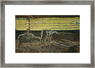 Contrast Of Light Framed Print by Giovanni Segantini