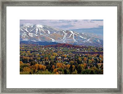 Contrast Of Seasons Framed Print