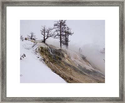 Contrast Framed Print by Yvette Pichette