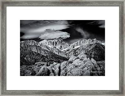 Contrasting Elements Framed Print by Jennifer Magallon