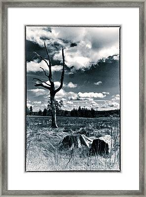 Contrasting Feelings Framed Print