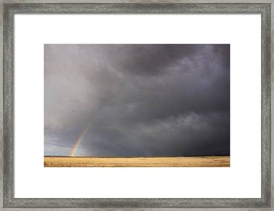 Contrasts Framed Print by Jon Emery