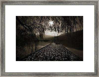 Framed Print featuring the photograph Contre Jour by Graham Hawcroft pixsellpix