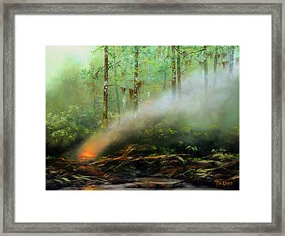 Controlled Burn Framed Print by Tim Davis