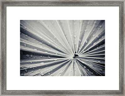 Convergence Framed Print by Adam Romanowicz