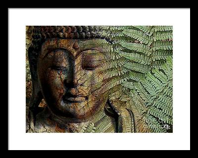Buddha Framed Prints