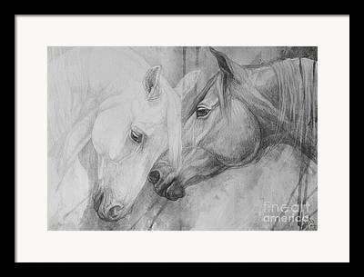 Horse Drawing Paintings Framed Prints