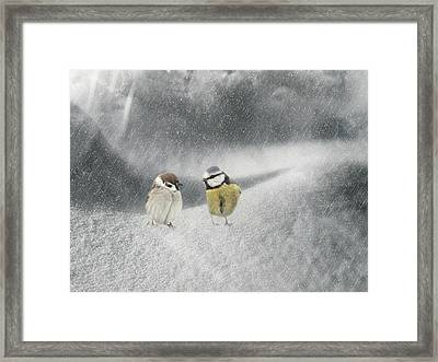 Conversation In The Snow Framed Print by Heike Hultsch