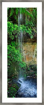 Cool And Refreshing Framed Print by Kaye Menner