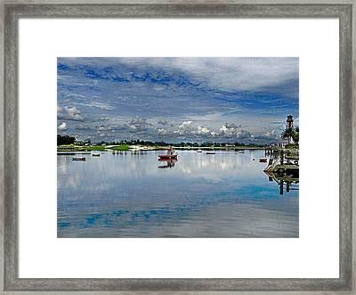 Cool At The  Pool Framed Print