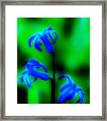 Cool Blue Framed Print by Thomas  MacPherson Jr
