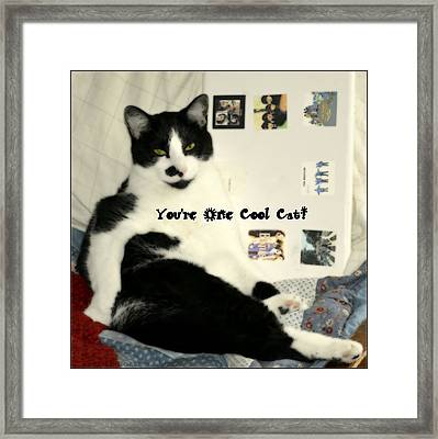 Cool Cat Greeting Card Framed Print by Kathy Barney