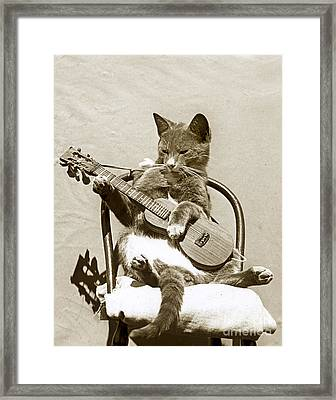 Framed Print featuring the photograph Cool Cat Playing A Guitar Circa 1900 Historical Photo By Photo  Henry King Nourse by California Views Mr Pat Hathaway Archives