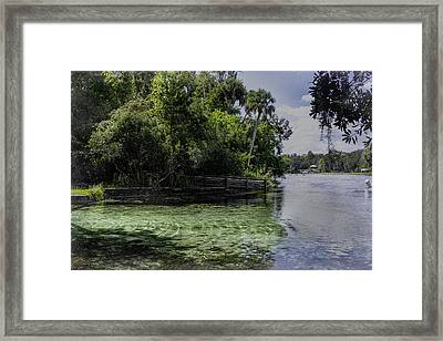 Cool Clear Water Framed Print by Judy Hall-Folde