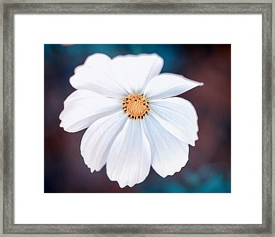 Cool Colors Framed Print by Tammy Smith