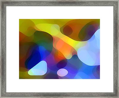 Cool Dappled Light Framed Print by Amy Vangsgard