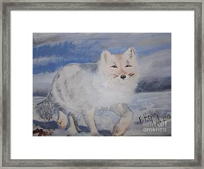 Cool Fox Framed Print