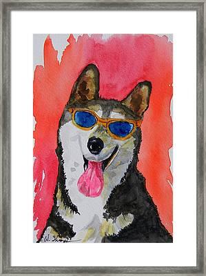 Cool Husky 3 Framed Print by Warren Thompson
