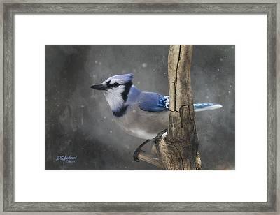 Cool In Blue Framed Print