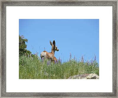 Cool Framed Print by Jeff Pickett
