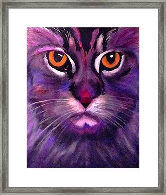 Cool Maine Coon Framed Print