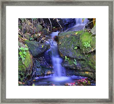 Cool Framed Print by Marty  Cobcroft