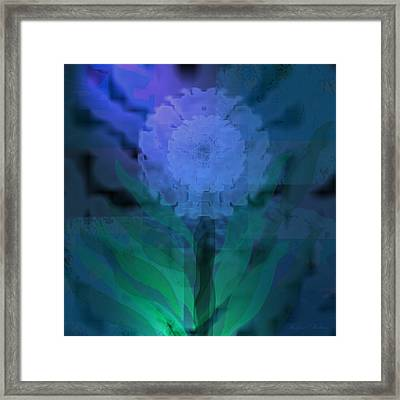 Cool Morning Framed Print by Kylie Sabra