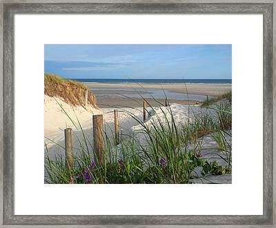 Cool Of Morning Framed Print