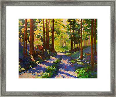 Cool Of The Shade Framed Print by Mary McInnis