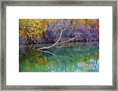 Cool Reflections Framed Print