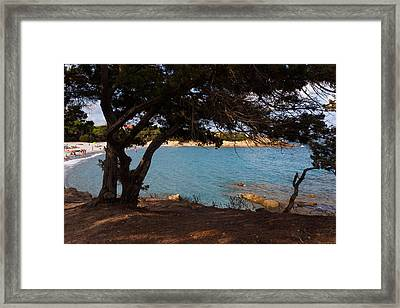 Framed Print featuring the photograph Cool Shade by Paul Indigo