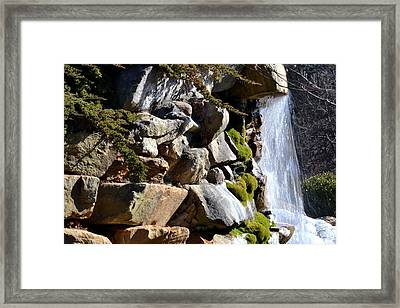 Cool Water  Framed Print