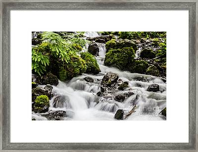 Framed Print featuring the photograph Cool Waters by Suzanne Luft