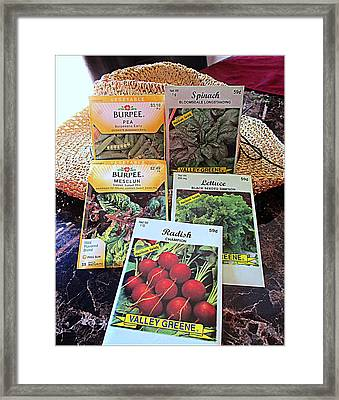 Cool Weather Seeds Framed Print by Kay Novy