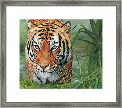 Cooling Down Framed Print