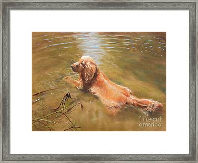 Cooling Off Framed Print by Colleen Quinn