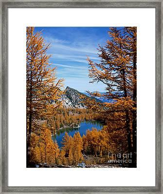 Cooney Lake And Martin Peak Framed Print