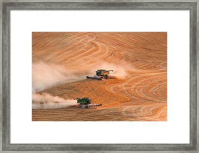 Cooperation Framed Print by Mary Jo Allen