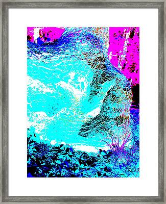 Coos Canyon 227 Framed Print