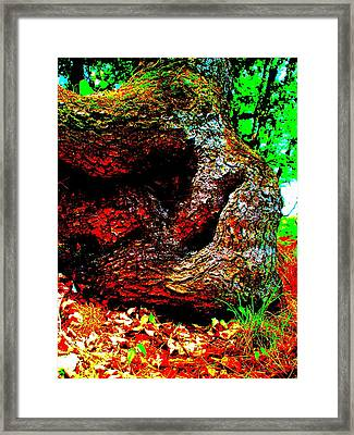 Coos Canyon 228 Framed Print