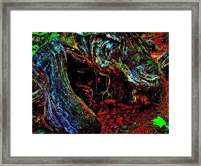 Coos Canyon 229 Framed Print